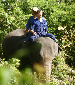 3 days 2 night Elephant Trekking (The Way of Mahout Learning Program)