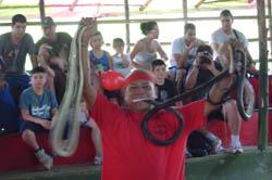 This farm gathers poisonous snakes and non-poisonous snakes