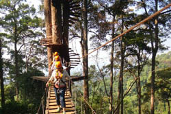Jungle Flight Chiang Mai-Package JF1 - Eco