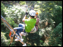 Rush after Rush of adreanaline experience at Jungle Flight in Chiang Mai