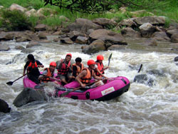 White Water Rafting in Mae Tang River
