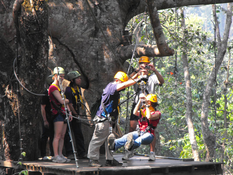 Flight of the Gibbon – a highly recommended adventure day trip. Fly through the canopy tree tops on zip lines.