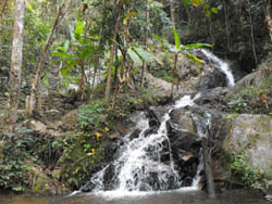 Visit a waterfall at Mae Kam Pong Village