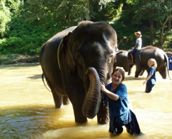 Enjoy bath and swim with our elephants in the river that borders our park.