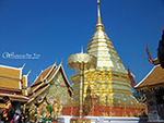 Half day Tour to visit Doi Suthep Temple and Meo Village