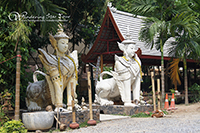 Doi Suthep & Wat Palad Temple (The Hidden Temple)
