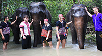 One day the Magical Elephant Training Course at Baan Chang Elephant Park