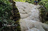 Doi Suthep Temple and Buatong Sticky Waterfall