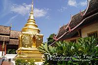 Chiang Mai City and Temples Tour Including Doi Suthep