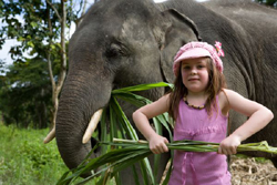 Elephant owner for a day.. Makes unforgettable stay