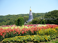Visit Two beautiful pagodas Phra Mahathat Nophamethanidol and Phra Mahathat Nophol Bhumisiri