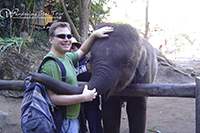 See and play with the lovely elephants at Mae Sa Elephant Camp  ลบ