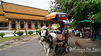 Tour by horse and carriage to visit 6 temple at wiang kum kam about 45 minute- 1 hr.