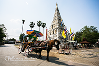 The Horse carriages that can take you around the ancient city.