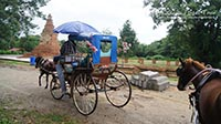 Horse and carriage to view historical temple remains.