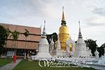 Wat Suan Dok, Temple