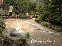 Bua Tong waterfall ( The limestone waterfall)  a waterfall in Chiang Mai that you can walk up and walk down inside the waterfall without slipping.