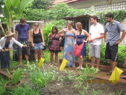 Visiting and testing some herb in an organic kitchen garden