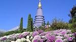 wo beautiful pagodas Phra Mahathat Nophamethanidol and Phra Mahathat Nophol Bhumisiri, pagodas
