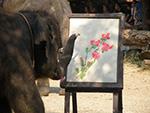 Elephant Painting show