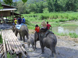 Mini Bus Rental Chiang Mai - One day trek Mae Wang Area