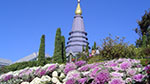 Chiang Mai Package Tours - Private 2 days Discovery Chiang Mai Package Tour