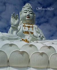 Chiang Mai Chiang Rai Tour Package - 2 days 1 night Explore Chiang Mai & Chiang Rai