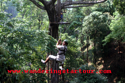 Chiang Mai Package Tours - 3 days Attractions Travelers Recommend  (Join tour)