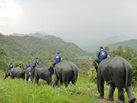 3 days 2 nights Chiang Mai – Chiang Rai Discovery Tour Package + Hotel 2 nights