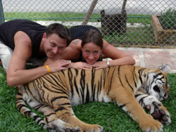 Visit Tiger Kingdom