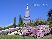 Visit King and Queen Pagodas