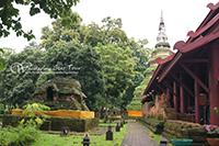 Visit Chedi Luang Temple