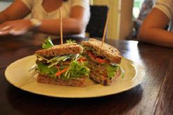 vegetarian-sandwich