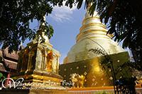 Main Chedi at Wat Phra Singh Worawihan