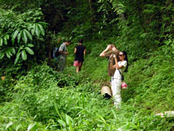 Lifestyle Adventure Trek (North of Chiang Mai Area)