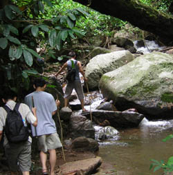 2 Days 1 night Trekking (Northwest of Chiang Mai Area)
