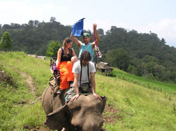 2 Days 1 night Trekking in Chiang Mai at Doi Inthanon National Park Area