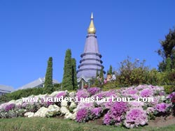 1 Day Trek at  Doi Inthanon National Park, The top highest mountain of Thailand ( This trip recommend in Nov-Feb)