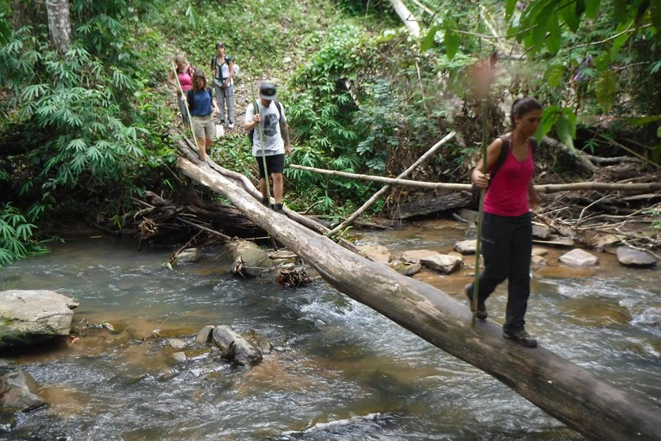 3 days Chiang Mai Trekking only walk at Doi Innthanon National Park Area WTT3DD