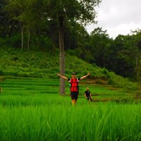 1 day only walk at Doi Innthanon National Area and Bamboo Rafting WTT1DDB