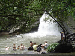 Visit and enjoy swimming at the waterfall