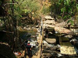 Treking in chiang Mai at Maewang area