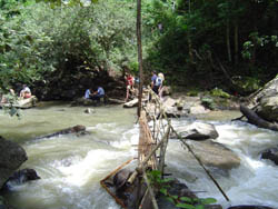 Chiang Mai Trekking  with lots of options to satisfy everyone's expectations