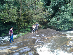 Pha Dok Siew Nature Trail with about 2 hours trekking through the forest rice field