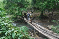 2 days Trekking only walk at Doi Innthanon National Park (walking only and no elephants or elephant riding)