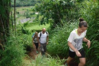 3 days Trekking only walk at Doi Innthanon National Park Area
