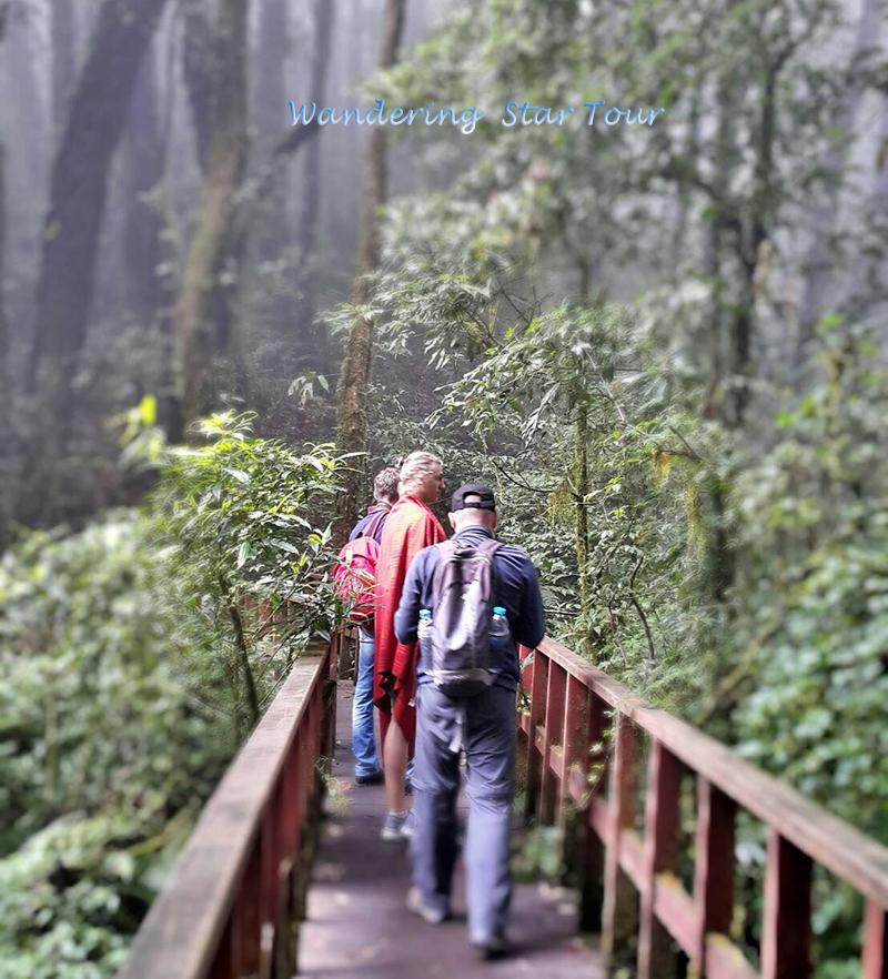 Angka trail