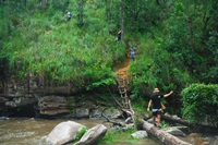 One day Trekking only walk at Doi Innthanon National Park and Bamboo Rafting