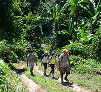 High Mountain Trek You'll experience lush rain forest and witness the amazing flora and fauna that makes Northern Thailand so special!